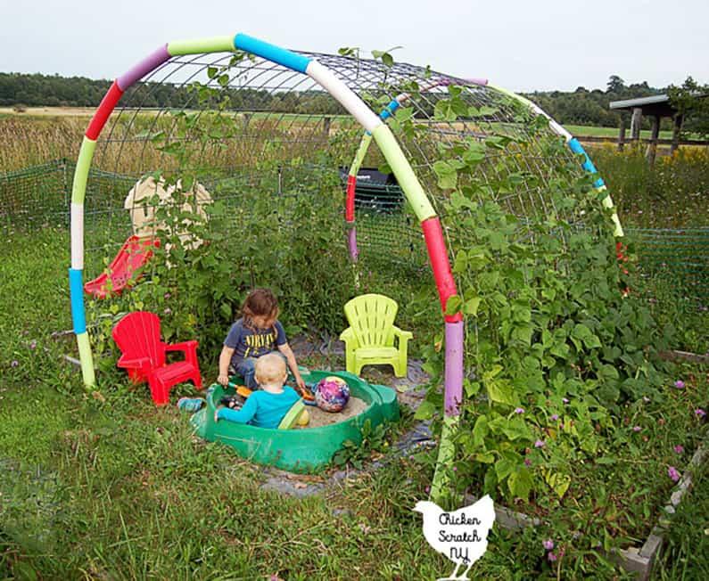 garden trellis DIY on a budget