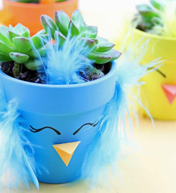 small succulent planter DIY