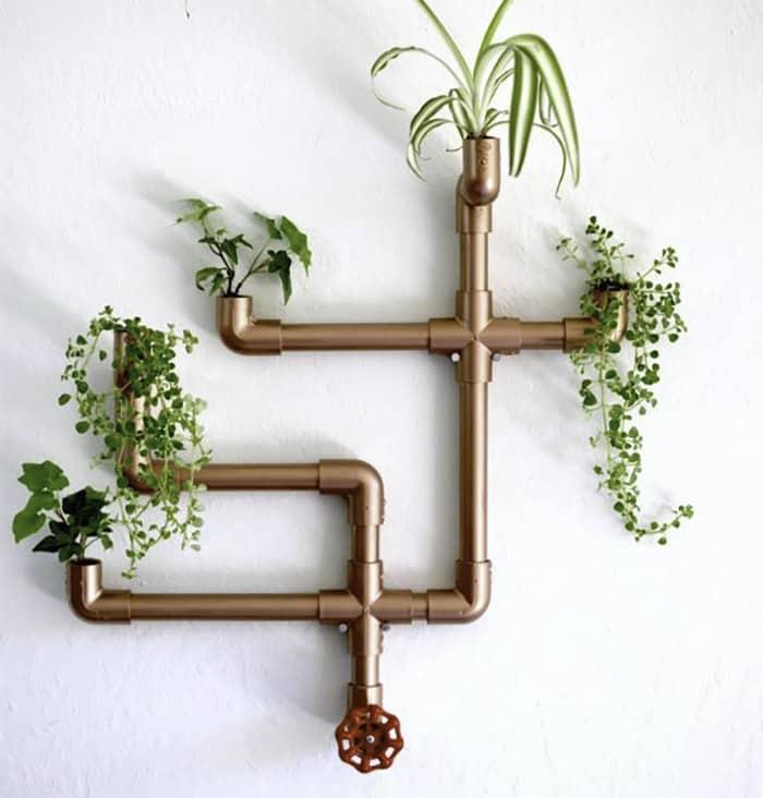 diy succulent arrangement