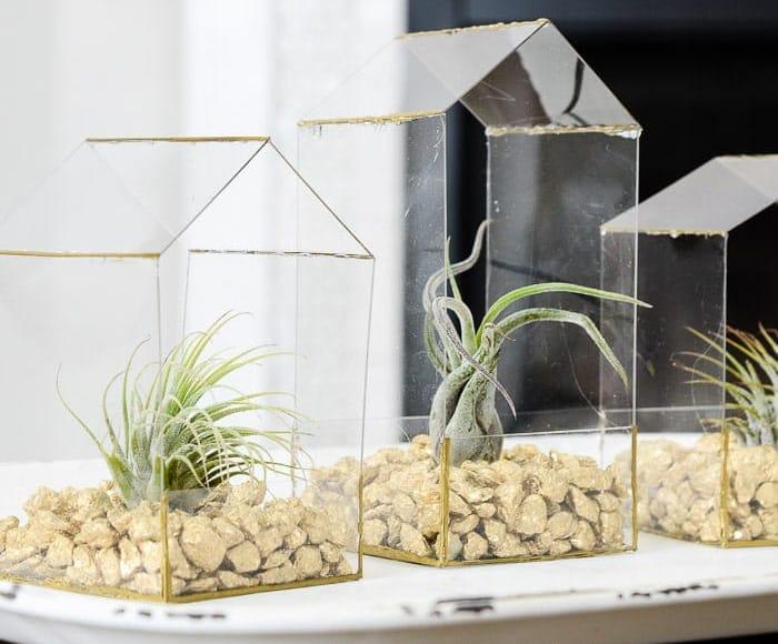 succulent planter arrangements