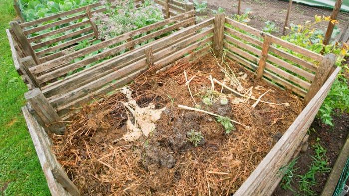 sustainable backyard ideas